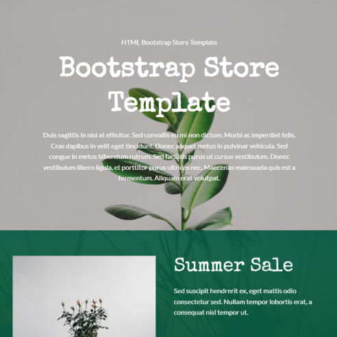 Bootstrap Store Template – Free Download