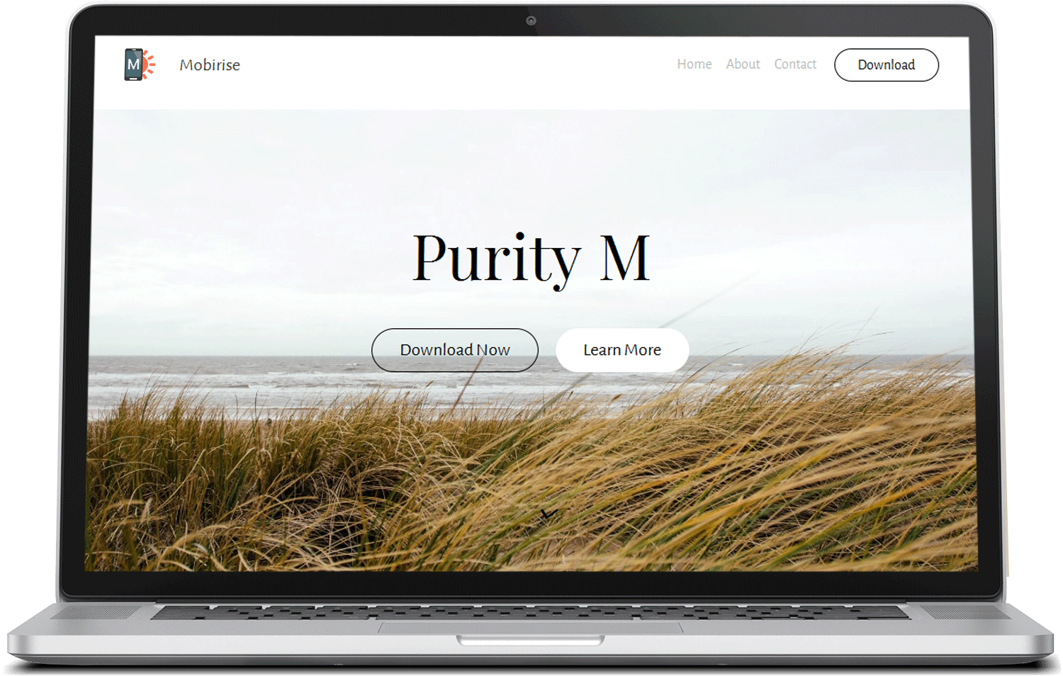 PurityM Bootstrap Free Template preview